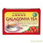 Dr.chen galagonya /hawthorn/ tea filt. 20 filter